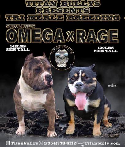 Omega X Rage